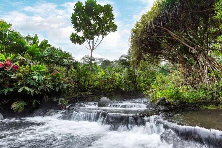Tabacon Thermal Resort & Spa. La Fortuna, Costa Rica